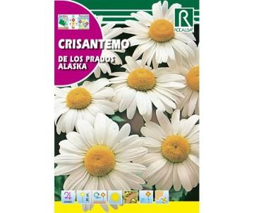 Sobre de Semilla Crisantemo...