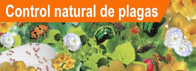 Control Natural de Plagas