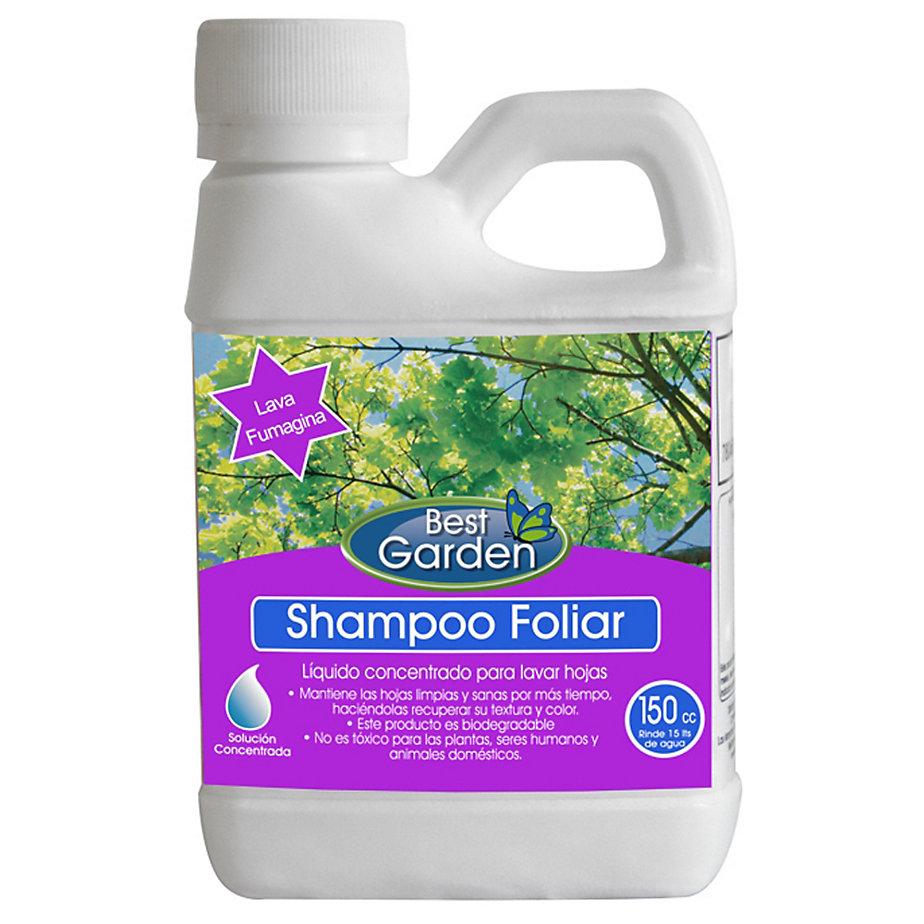 shampoo foliar